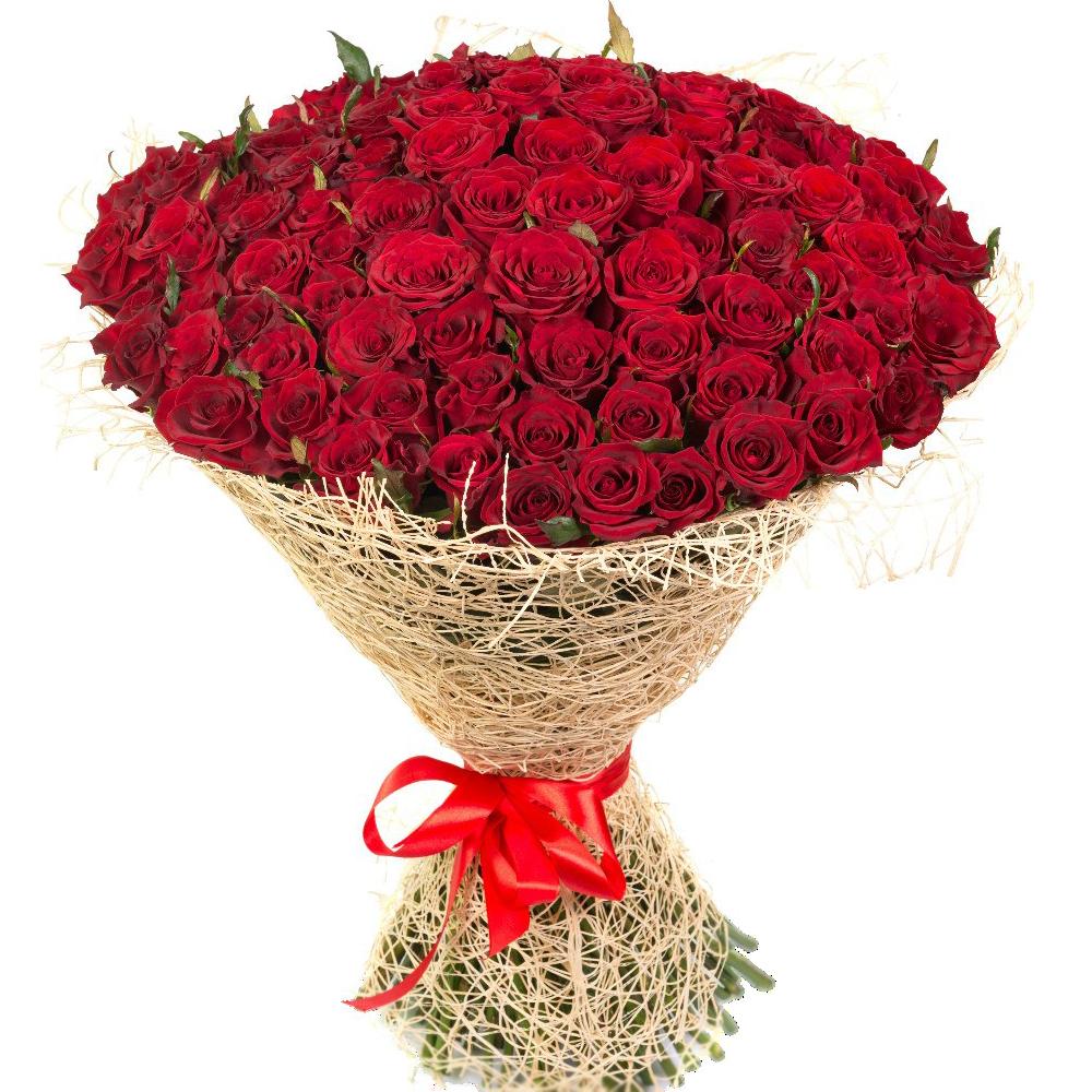 самые красивые розы картинка на подарок нет желания или